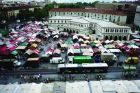 Food Markets In The Belly Of The City stg.1