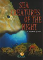 Sea creatures of the night